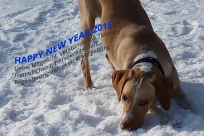 Glückliches Neues Jahr 2015