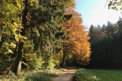Herbstgedicht